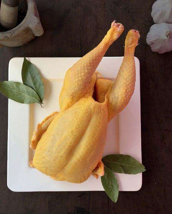 pollo de corral de primera calidad
