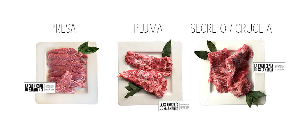 DIFERENCIA-PLUMA-SECRETO-PRESA